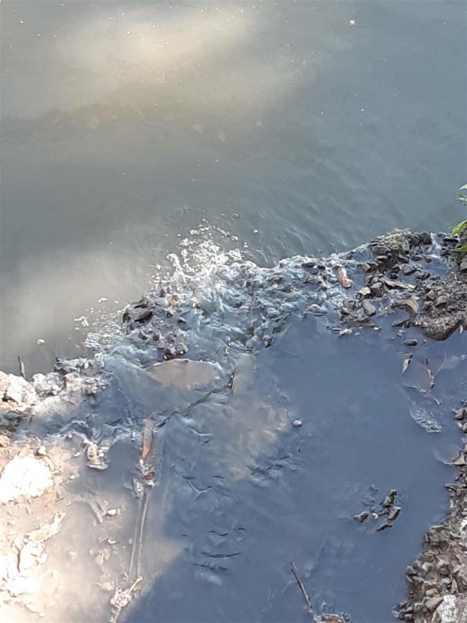 Justiça determina sanções à Sabesp por contaminação na lagoa do João Aranha