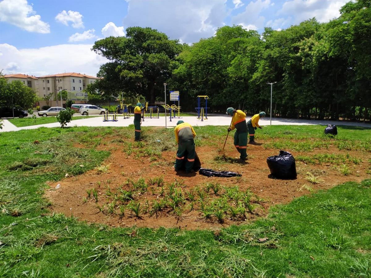 Prefeitura intensifica mutirões de limpeza pela cidade