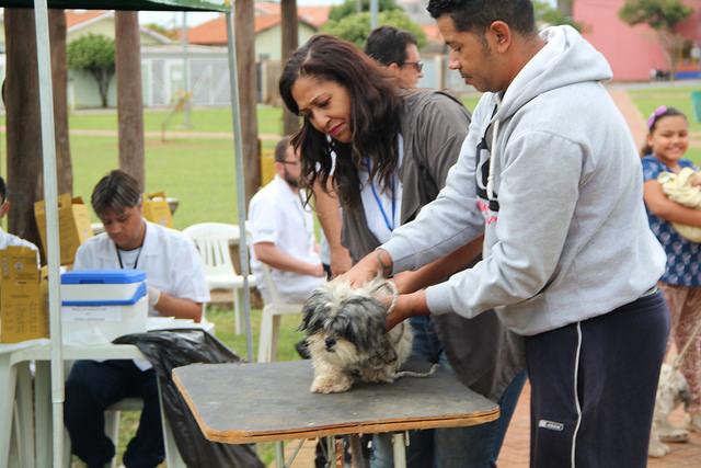 Região do São José recebe última etapa da Campanha de Vacinação Antirrábica